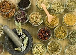 Buy Dried herbs
