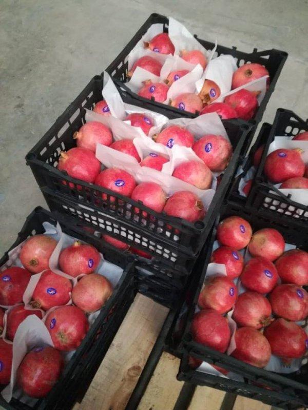 Buy Fresh sweet pomegranate