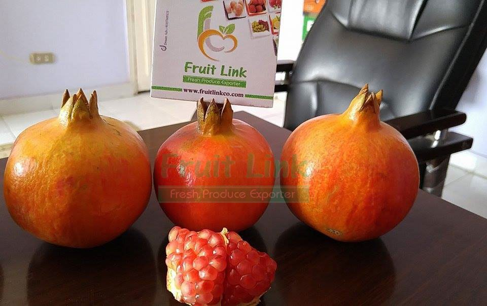 شراء Egyptian fresh Pomegranates by fruit link
