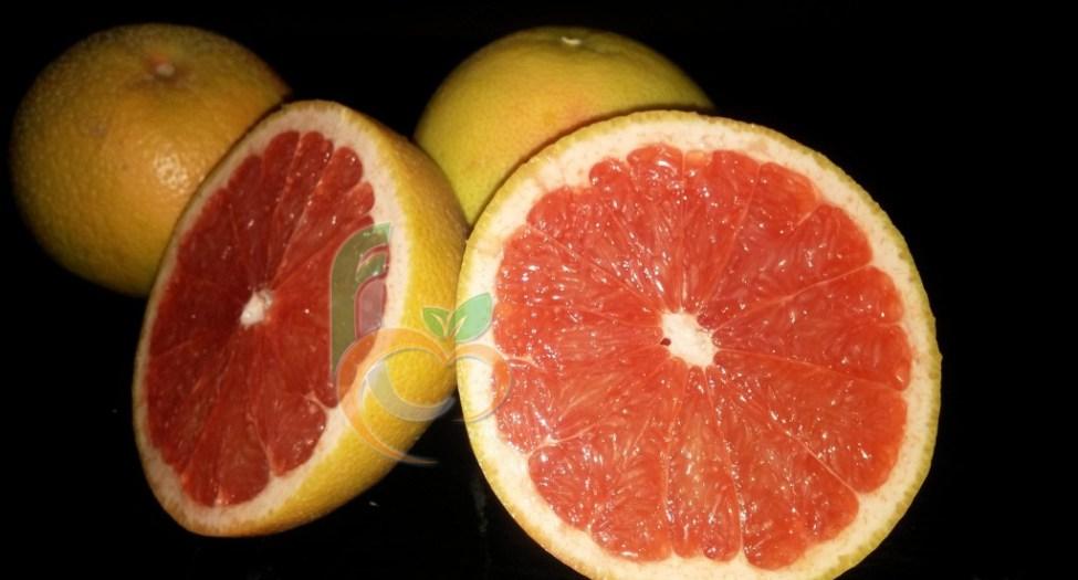 شراء Grapefruit