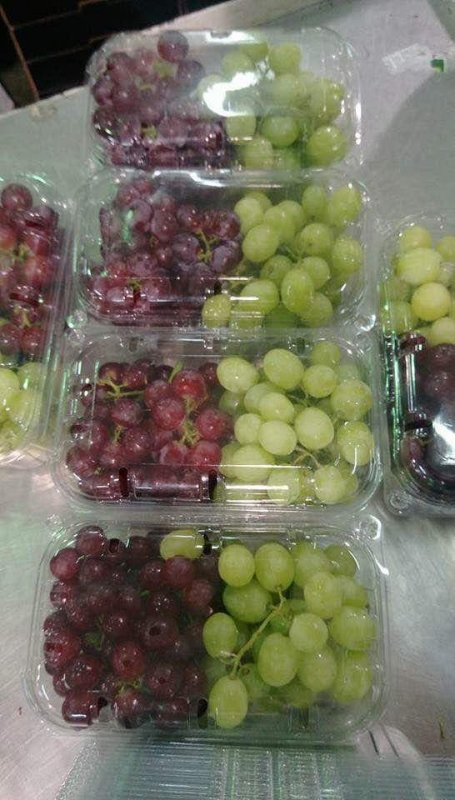 شراء Fresh grapes (green - white - red) (seedless - seeded)
