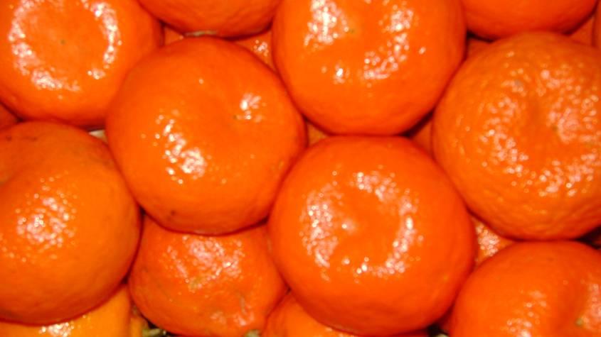 Buy Fresh mandarin
