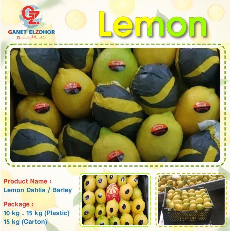 شراء Lemon Barley