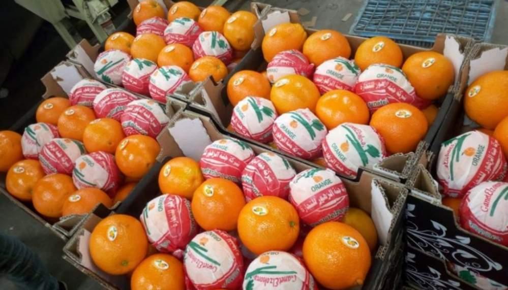 شراء Orange - برتقال GANET ELZOHOR COMPANY