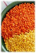 شراء Yellow Lentils