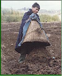 شراء Fertilizer