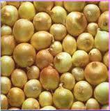 شراء SONAC produces about 10.000 - 15.000 Mtons of Onions per season. As usual as all of SONAC's products, we provide best quality of Onions.