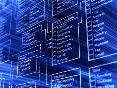 شراء تصميم و بناء قاعده بيانات العملاء