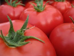 شراء طماطم