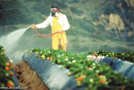شركة مبيدات حشرية بخميس مشيط