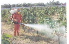 Sprayers Mounted