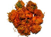 Calendula officinalis L.