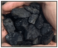 Egyptian Coal