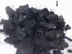 فحم تصدير
