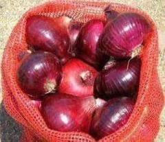 Fresh & trockene Rote Zwiebel