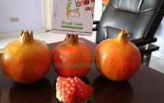 Egyptian fresh Pomegranates by fruit link