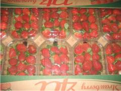 Strawberries, fresh frozen