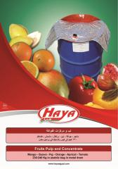 HAYA's Fruits Pulp & Concentrate