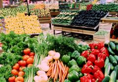 Export of fresh vegetables