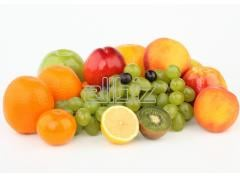 Export of fresh fruit