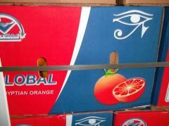 Egyption Oranges