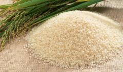 Rice (Dorgham)