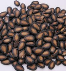 Melon seeds (Arishy Pulp)