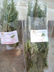 Fresh rose merry  (fresh herbs)