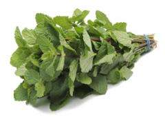 Fresh mint (Fresh herbs)
