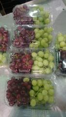 Fresh grapes (green - white - red) (seedless -