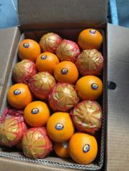 Fresh navel orange sizes ( 48-56-64-72-80-88-100 )