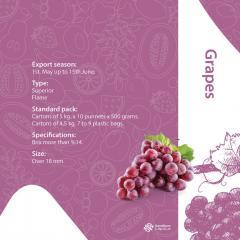 Свіжий виноград