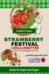 Strawberries - Castle Strawberries for import and