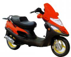 Scooter Hammers 150 T3