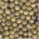 Coriander (seeds)