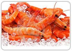 Whole shrimp