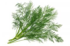 Dill (leaves)