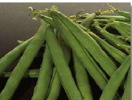 Dryings for vegetables