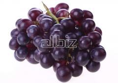Rad grapes