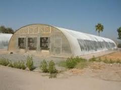 Farm greenhouses