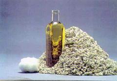 Pamuk yağı