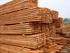 معالجة الاخشاب