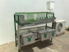 Evcil tavşan yetirştirme için donatım