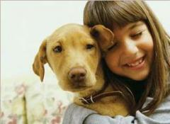 Veterinary antimicrobial drugs (fluoroquinolones)