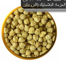 حمص الشام