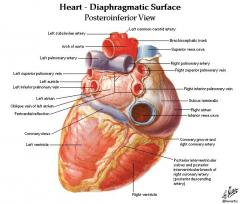 Cardiac devices
