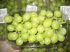 صور للعنب المصدر