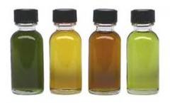 Artemisia essential oils