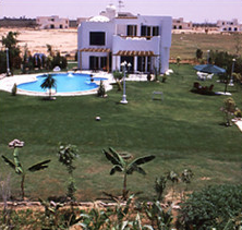 منظر الحديقة