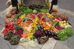 نسعى دوماً لتقديم أجود المنتجات و المحاصيل